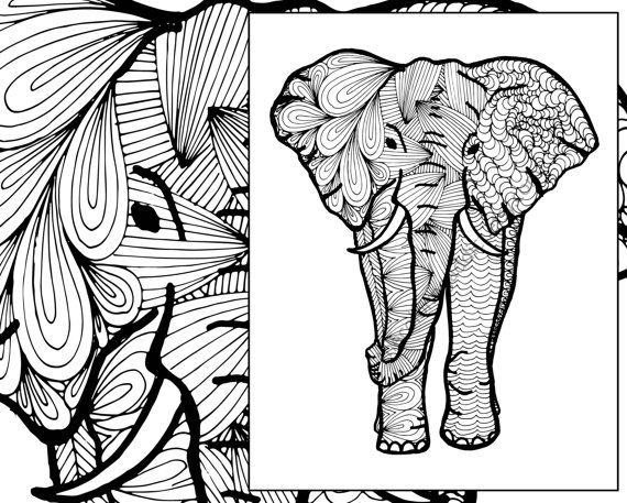 570x457 Elephant Coloring Sheet Animal Coloring Pdf Zentangle Adult