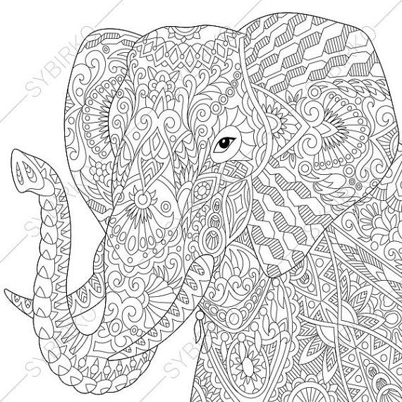 570x570 Adult Coloring Pages Elephant Zentangle Doodle Coloring Book