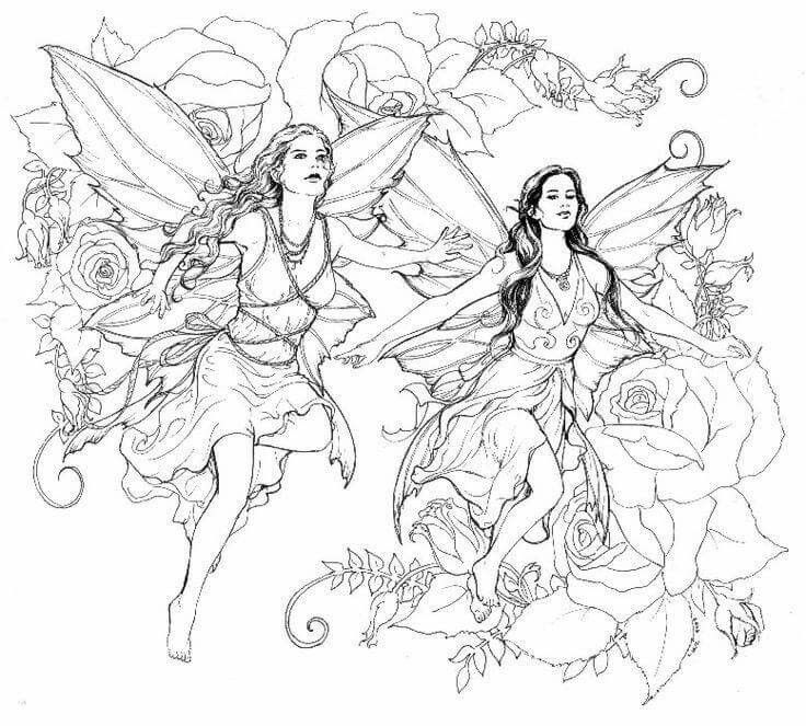 736x663 Best Fairies Coloring Images On Coloring Books