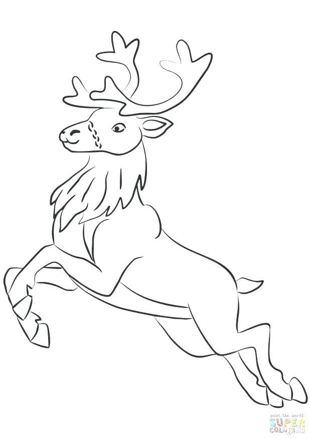 Elk Coloring Pages At Getdrawings Com Free For Personal