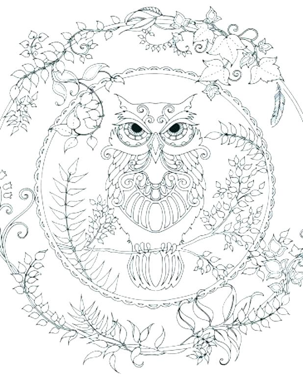 618x772 Enchanted Coloring Pages Owl Printable Exciting Page Print Cute
