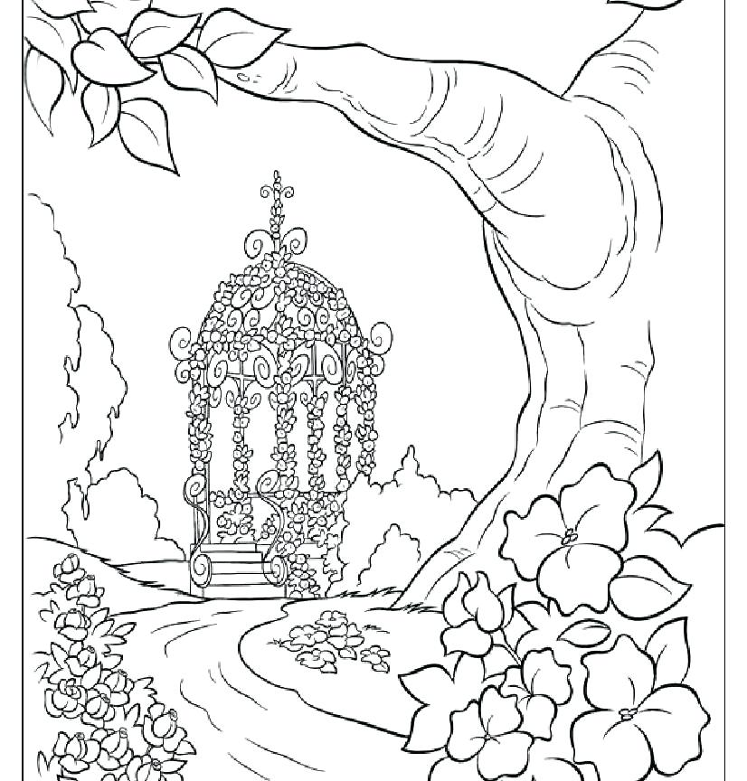 826x864 Island Coloring Page Click To See Printable Version Of Polar Bear