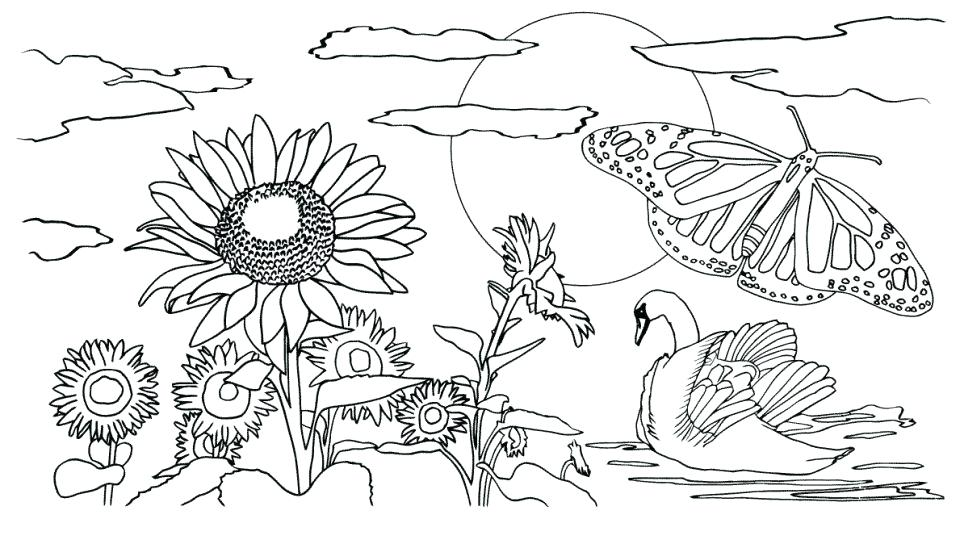 960x544 Island Coloring Pages Nature Island Coloring Pages Print With Palm
