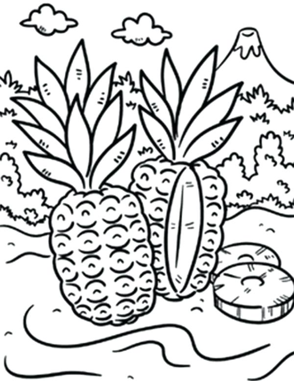 600x777 Island Coloring Pages Wild Pineapple In A Tropical Island Coloring