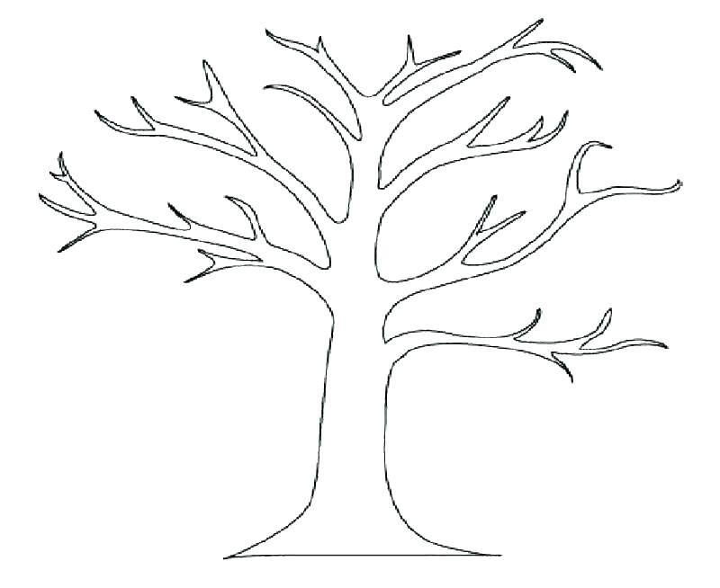 800x654 Palm Tree Coloring Page Coconut Coloring Coconut Tree Coloring