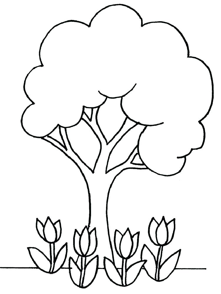 750x1000 Printable Tree Coloring Pages Coloring Page Is A Good Pattern