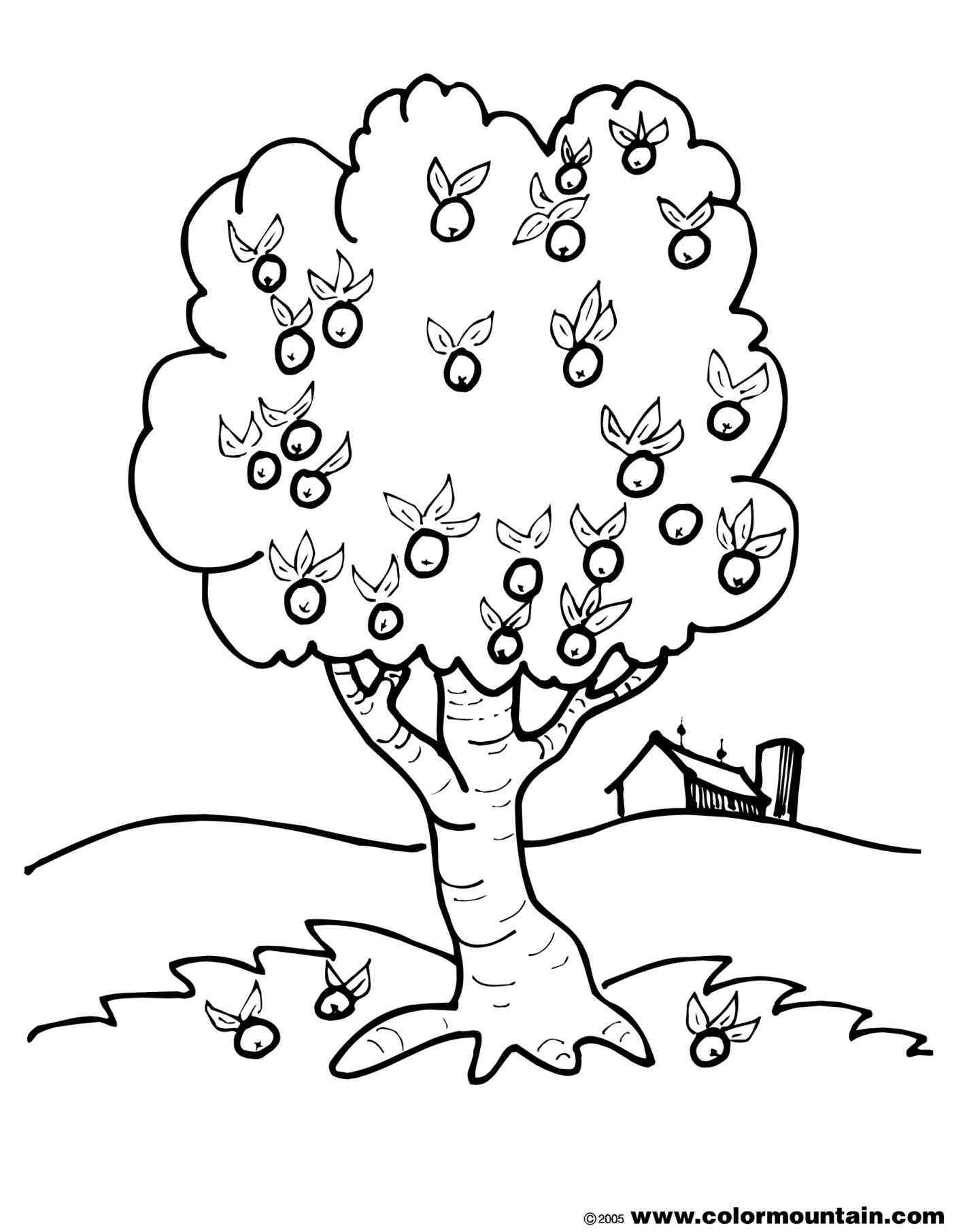 1422x1812 Simple Tree Coloring Page Many Interesting Cliparts