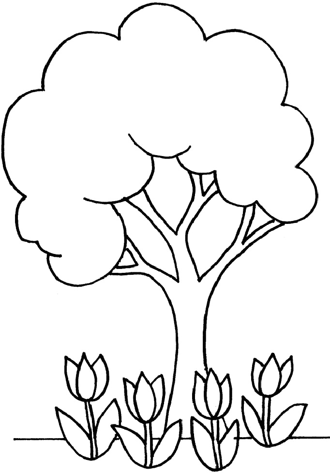 682x976 Sweet Idea Coloring Pages Of Trees Perfect With Additional Line