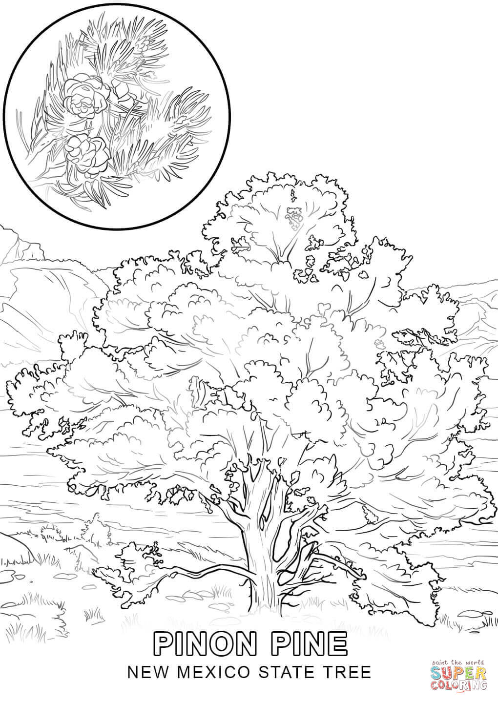 1020x1440 Tree Coloring Pages Page Image Clipart Images