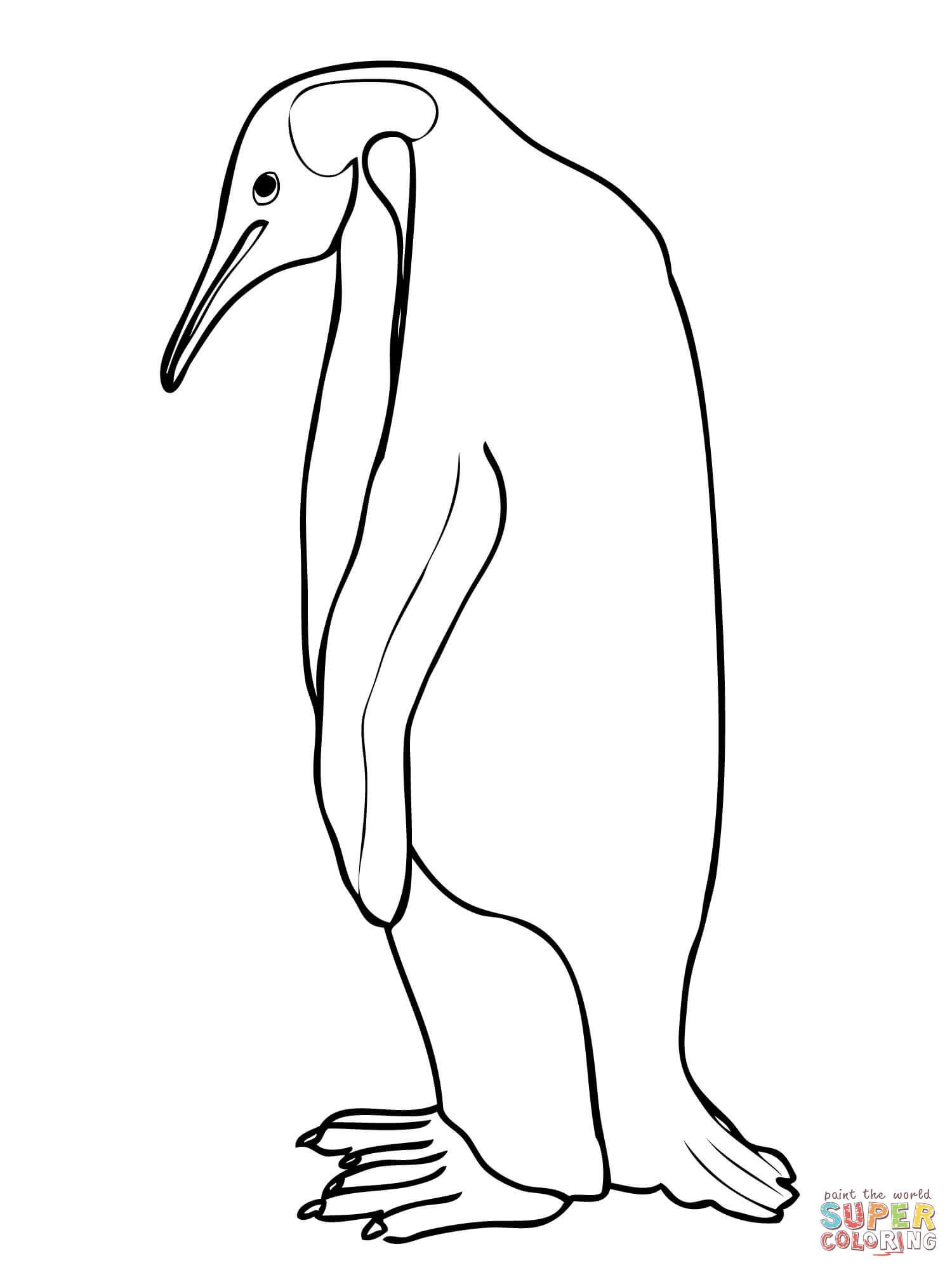 1500x2000 Emperor Penguin Coloring Page Acpra