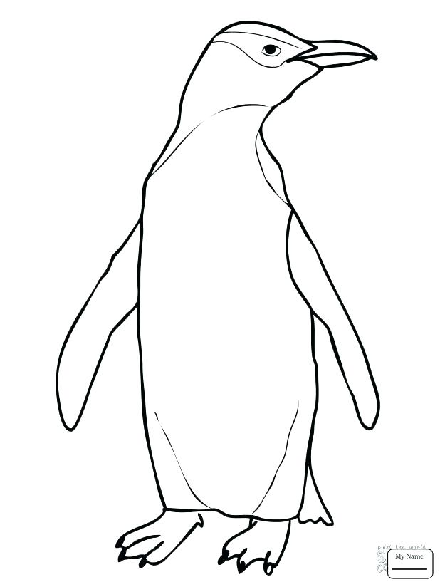 618x824 Emperor Penguin Coloring Page Printable Penguin Coloring Pages