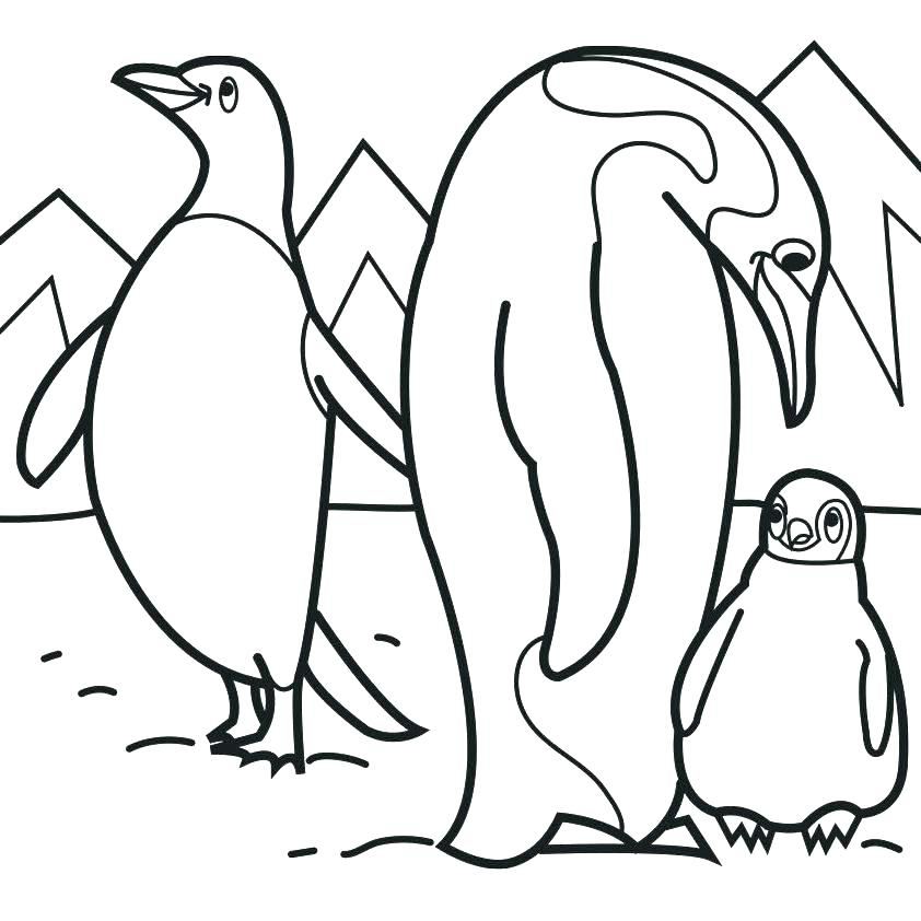 842x842 Penguin Coloring Pages Free Printable Emperor Penguin Coloring