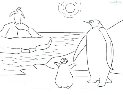 425x329 Coloring Page Penguin Amazing Penguin Coloring Pages Crayola Photo