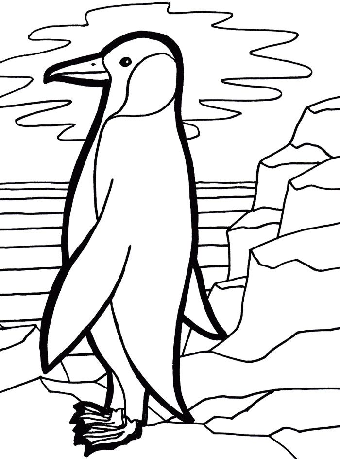 700x944 Cute Emperor Penguin Coloring Page For My Babies