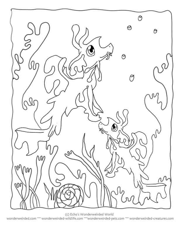 612x792 Empoleon Coloring Page
