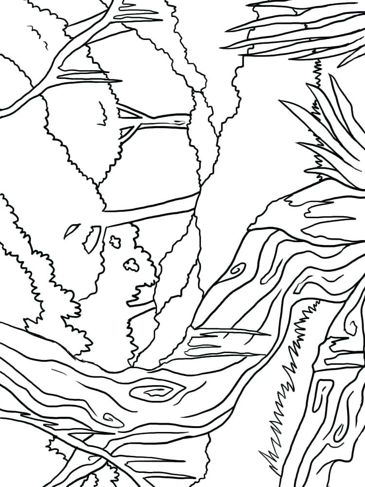 750x1000 Forest Coloring Pages Forest Coloring Pages Enchanted Forest