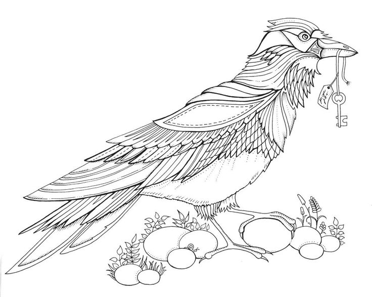 33 Johanna Basford Coloring Pages - Free Printable Coloring Pages