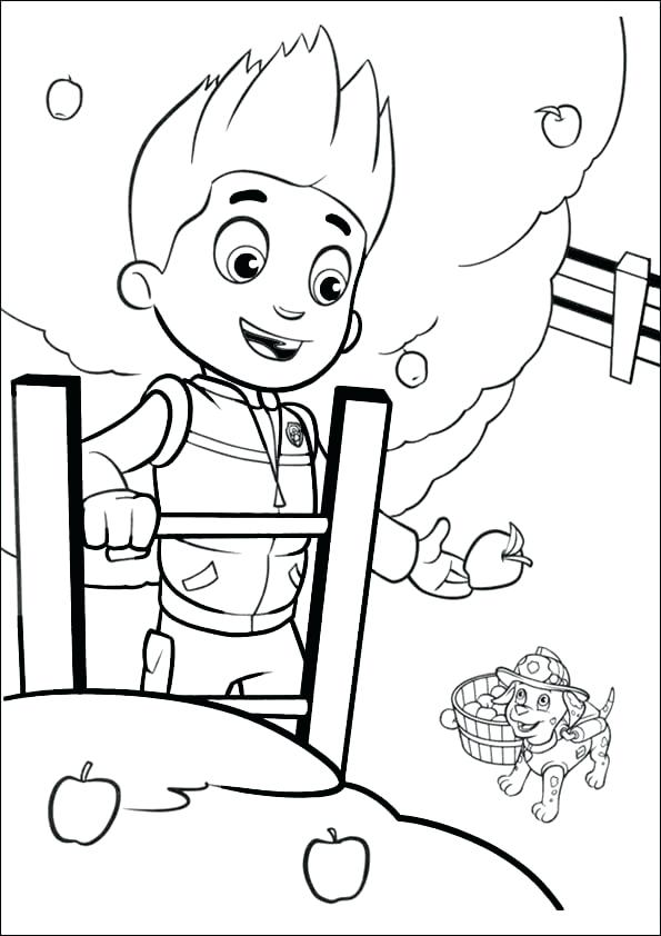 595x842 Endangered Species Coloring Pages View Larger Free Endangered