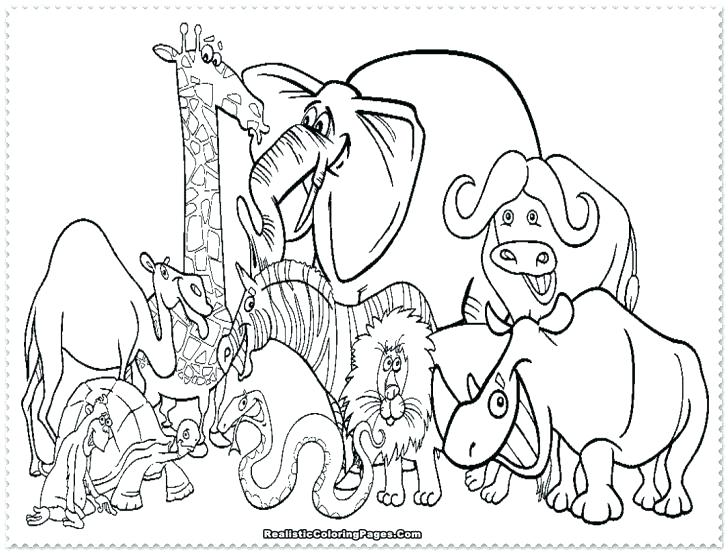 728x553 Endangered Animals Coloring Pages Polar Bear Color Page Bear