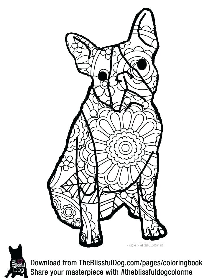 Endangered Species Coloring Pages at GetDrawings.com | Free ...