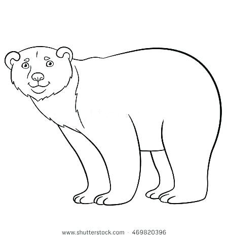 450x470 Endangered Species Coloring Pages Endangered Animals Coloring