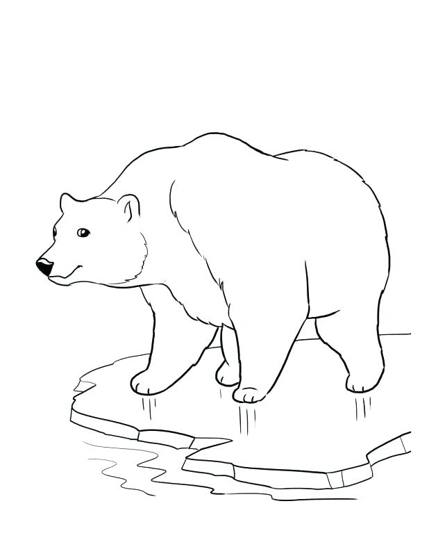 618x800 Endangered Species Coloring Pages Endangered Species Coloring