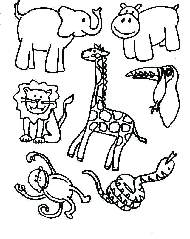 637x800 Endangered Species Coloring Pages Rain Forest Coloring Pages