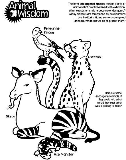 Endangered Species Coloring Pages At Getdrawings Com Free For
