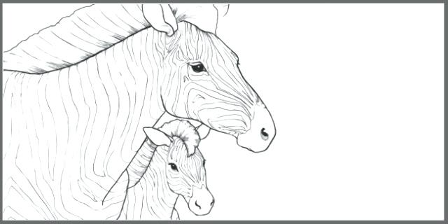 640x320 Endangered Species Coloring Pages Wildlife Coloring Pages