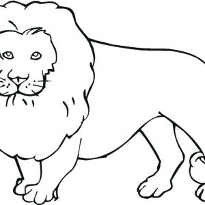 300x300 Free Coloring Pages Of Endangered Animals Copy Endangered Animals