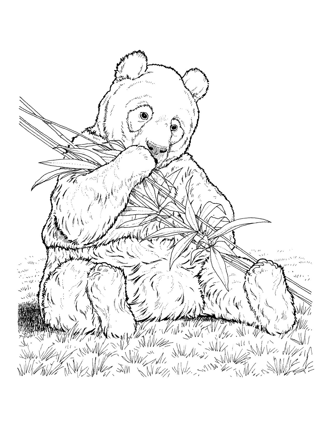 1275x1650 Fresh Free Endangered Animals Coloring Pages Colors Print