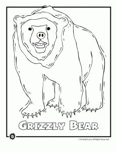 232x300 Most Endangered Rainforest Animals Coloring Pages Animal Jr