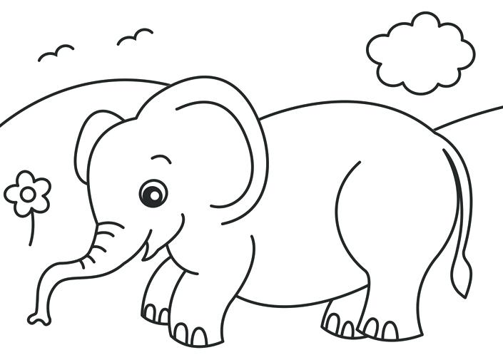 705x505 Colouring Book To Protect Endangered Animals Paw Patrol Coloring