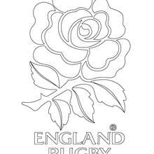 220x220 Rugby Teams Coloring Pages