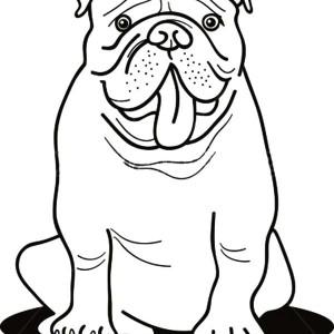 300x300 English Bulldog Face Coloring Pages, Bulldog Puppy Coloring Pages