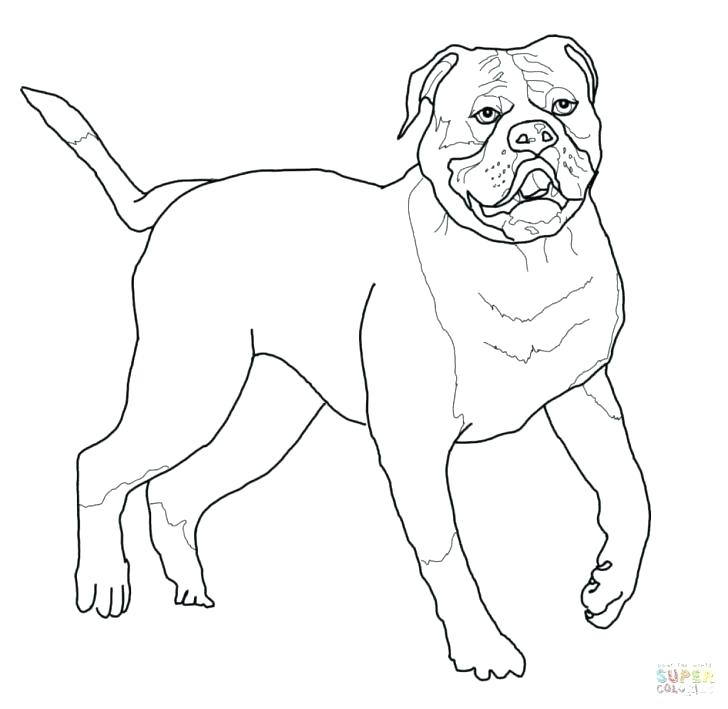 728x709 English Coloring Pages Cook Coloring Page A Free Coloring