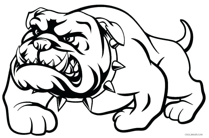 800x530 Bulldog Coloring Pages