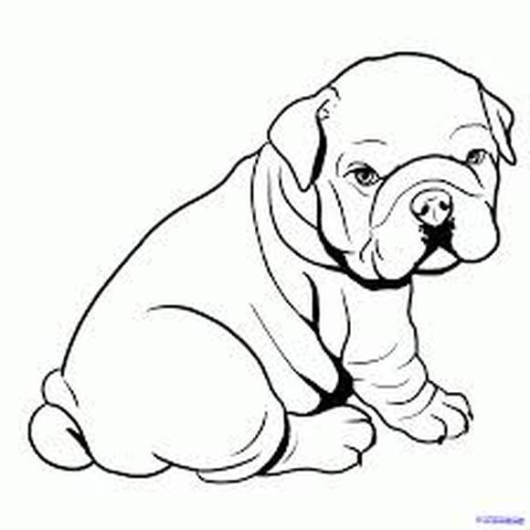 580x580 Bulldog Coloring Pages