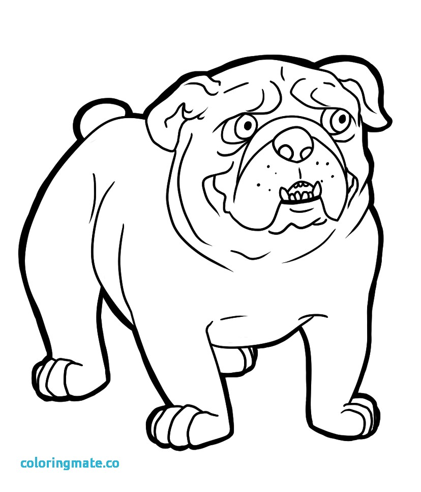 828x966 Bulldog Coloring Pages Awesome Old English Bulldog Coloring Pages
