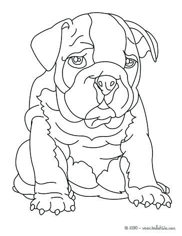 364x470 Bulldog Coloring Pages Printable Bulldog Coloring Sheets