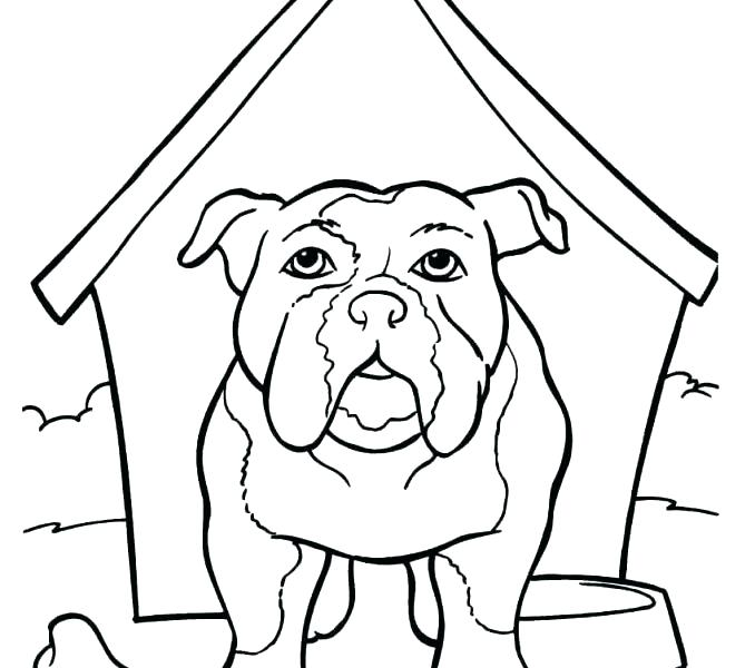 678x600 Bulldog Coloring Page Bulldog Coloring Pages Bulldog For Coloring