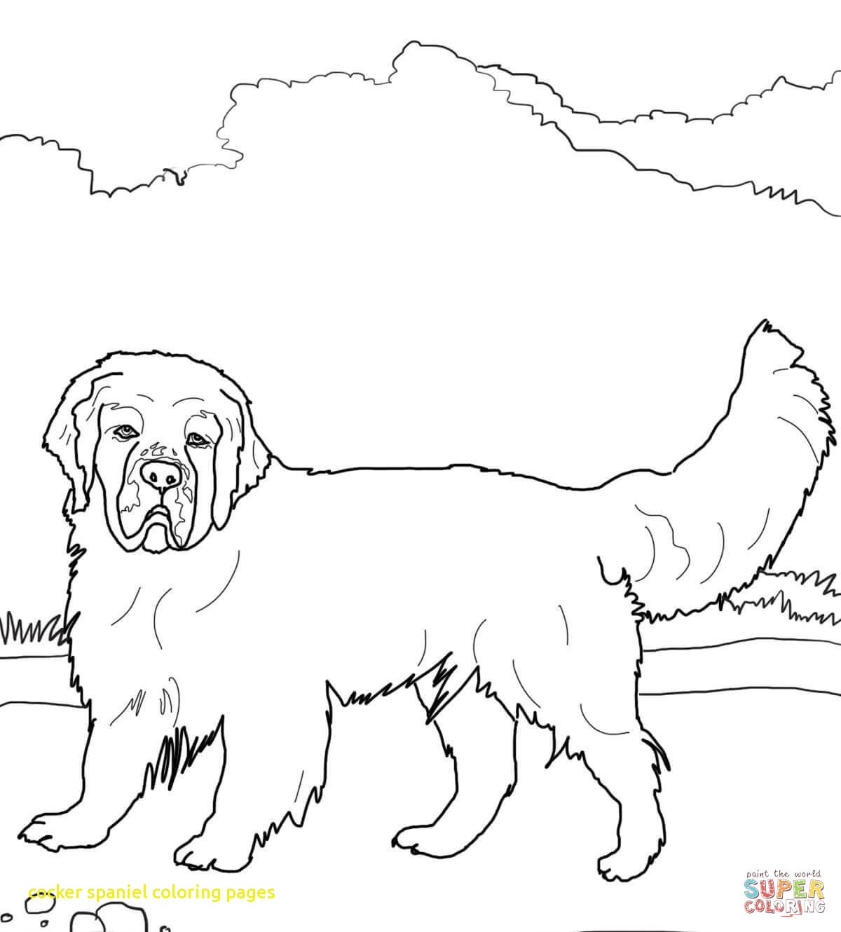 1200x1330 Cocker Spaniel Coloring Pages With Lps Coloring Pages Cocker