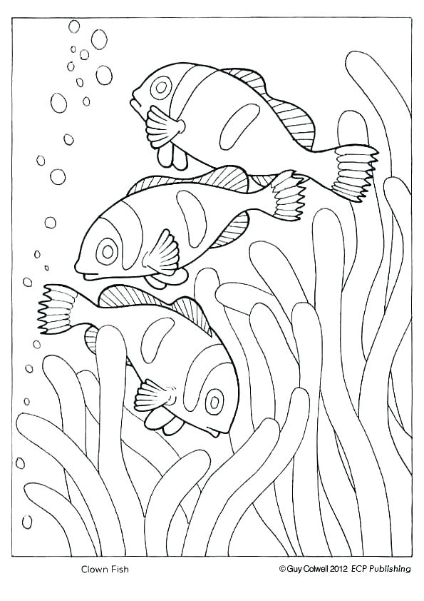 The best free Geographic coloring page images. Download from ...