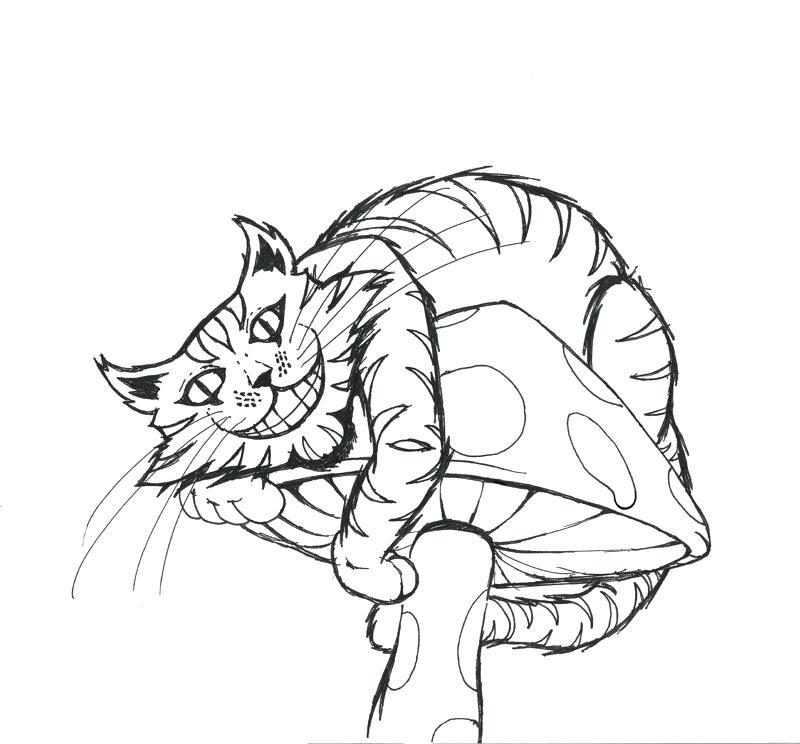 800x744 Drawn Cheshire Cat Kitty Cheshire Many Interesting Cliparts