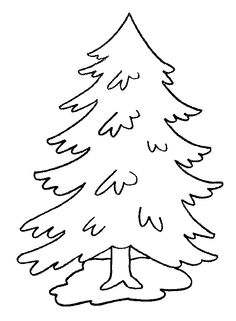 236x321 Evergreen Tree Outline Coloring Page Free Download