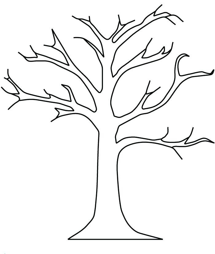 700x825 Coloring Page Of A Winter Tree Pages Evergreen Trees New