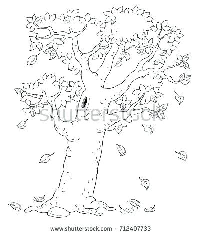 405x470 Four Seasons Autumn Tree Coloring Page Stock Illustration Stock
