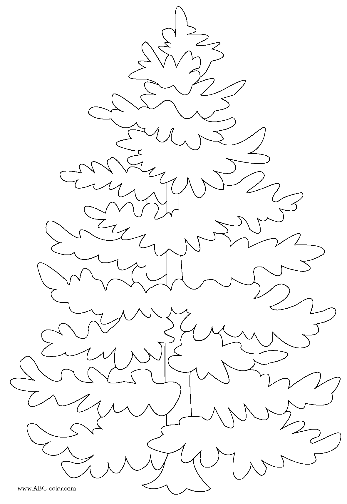1181x1713 New Coloring Pages Evergreen Trees