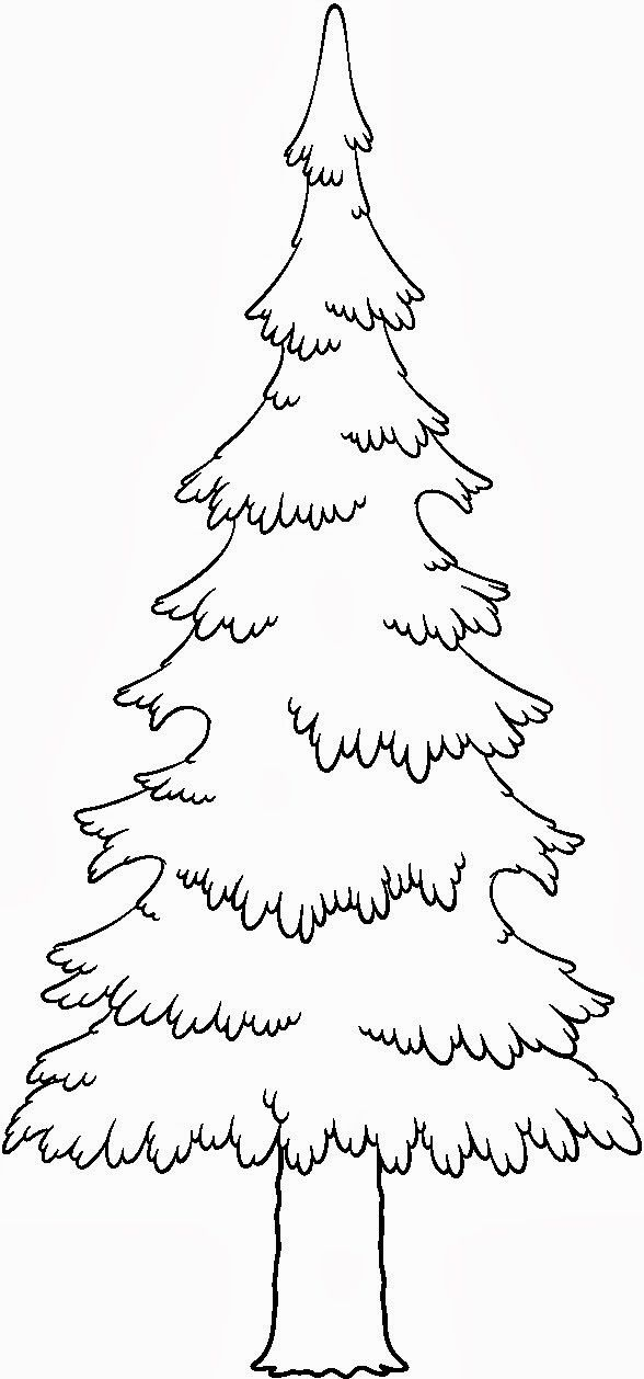 588x1258 Bear And Evergreen Tree Coloring Page