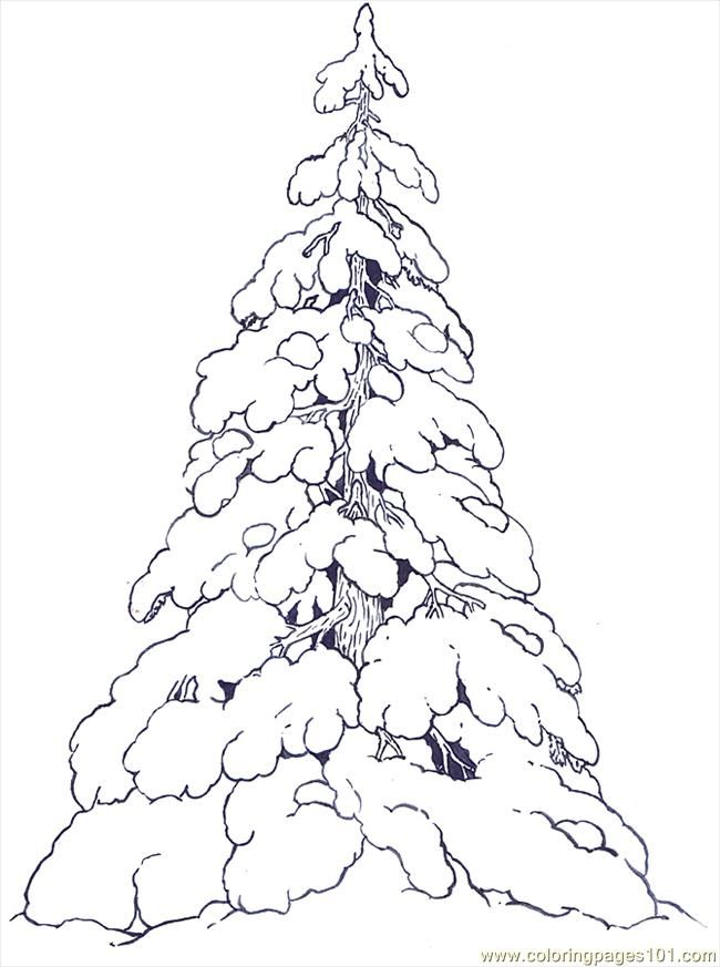 650x873 Free Printable Coloring Image Snow Covered Evergreens Reversed